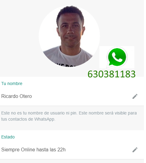 whatsapp-envio-chat