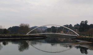 Puente Tirantes Pontevedra - Community Manager Pontevedra