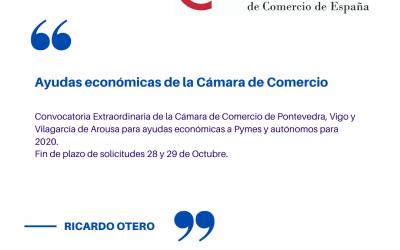 Ayudas económicas por coronavirus a Pymes 2020